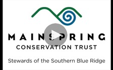 The Mainspring Conservation Trust is working with private land owners and members of the Eastern Band of Cherokee to preserve land where many tribe members are buried. (Mainspring Conservation Trust)