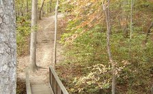 William B. Umstead State Park spans nearly 6,000 acres across the cities of Raleigh, Cary and Durham. (Wikimedia Commons)