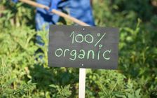The Office of Management and Budget is reviewing a proposed rule that is expected to reduce the importation of fraudulent organic products. (Adobe Stock)