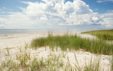 Millions of vacationers flock to North Carolina's Outer Banks each year. (Adobe Stock)