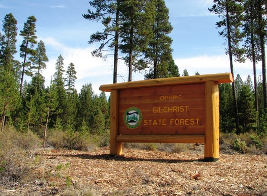PHOTO: Gilchrist State Forest is Oregon's newest state forest, created in part with money from the Land and Water Conservation Fund. Photo courtesy Oregon Department of Forestry.