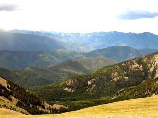 PHOTO: Conservation projects at New Mexico's Carson National Forest and around the country mark the 50th anniversary of Congress passing the Wilderness Act. Photo credit: U.S. Dept. of Agriculture.
