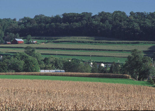 PHOTO: The Conservation Stewardship Program helps farmers enhance and improve upon the things they're already doing to protect the environment, and those with contracts up for renewal this year must do so by Sept. 12. Photo courtesy of USDA.