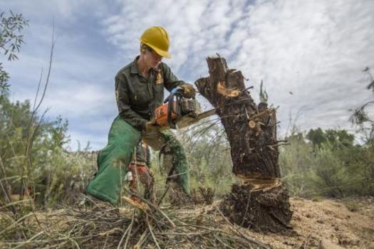 PHOTO: Idaho is one of 25 states where crews of young people will upgrade public-land access as part of the Fifty for the 50th celebration of the Wilderness Act. Photo courtesy of Public Lands Service Corps.