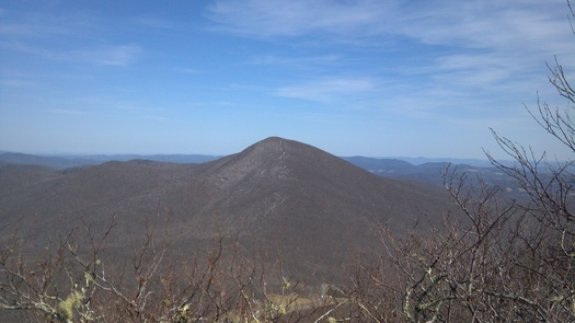 Photo: With help from the state's Clean Water Management Trust Fund, land trustees will be able to purchase additional acreage on 5,564 ft. Snake Mountain in the Blue Ridge Mountains, thereby expanding Elk Knob State Park. Photo courtesy of Blue Ridge Conservancy.
