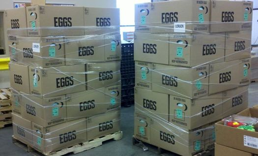 PHOTO: Ohio farmers are donating thousands of eggs this month to food banks in the state. Photo credit: Ohio Poultry Association.
