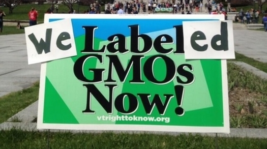 PHOTO: In Vermont, legislation to label foods made with genetically modified ingredients is set to go into effect in 2016 but is being challenged in court. There are November ballot measures in Oregon and Colorado. Photo courtesy Center for Food Safety.