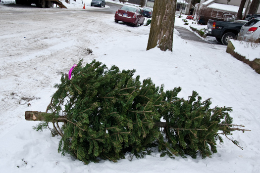 PHOTO: The trash generated by the average American household jumps by 25 percent during the holidays, but with some planning, that doesn't have to be the case. Photo credit: Steven Depolo/Flickr.
