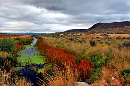PHOTO: CEOs of a dozen venture capital firms say the solitude and recreation available on public land can be viewed as economic opportunities to attract new business to the West. Photo of Malheur National Wildlife Refuge by Gary Halvorson, Oregon State Archives, on Wikimedia Commons.