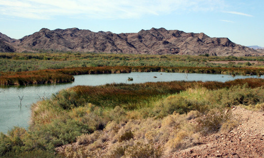 PHOTO: The Colorado River means millions of jobs and billions of dollars to Arizona's economy each year, according to a new report. Photo courtesy Arizona Department of Water Resources.