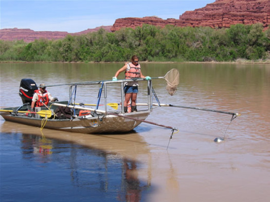 PHOTO: A new study quantifies the value of the Colorado River to a variety of industries across the seven Basin states, and says it is directly linked to the health of Colorado�s economy. Photo courtesy of U.S. Fish and Wildlife Service.