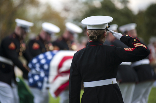 PHOTO: About 22 military veterans take their own lives every day, and legislation coming up for a vote this week in the U.S. Senate would prompt a third-party evaluation of the mental health and suicide prevention programs intended to help them. Image courtesy U.S. Defense Dept.