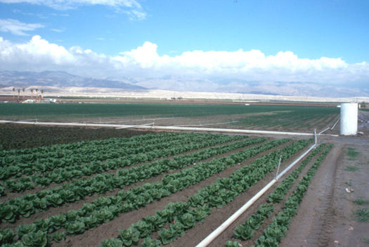 Photo: A new program from USDA could help more people in New Mexico and around the nation get into farming. Photo courtesy U.S. Department of Agriculture.