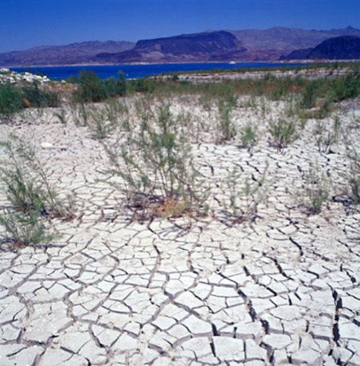 PHOTO: Some farmers and ranchers in New Mexico and other drought-ravaged Western states are eligible for emergency government loans linked to the USDA declaring 256 counties natural disaster areas. Photo courtesy U.S. Bureau of Reclamation.