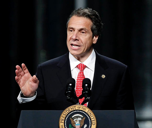 PHOTO: One of New York's top environmental watchdog groups has finished its review of Gov. Andrew Cuomo's budget proposal for the next year, and has some recommendations. Photo credit: Azi Paybarah/Flickr