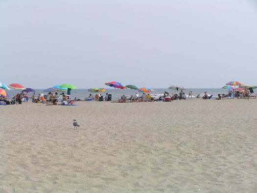 Summer vacation adventures on public lands could change dramatically if the push to turn federal lands over to state control succeeds, and there have been moves to do that in both the U.S. House and Senate. Photo of beach-goers at Assateague Island. Courtesy: National Park Service.