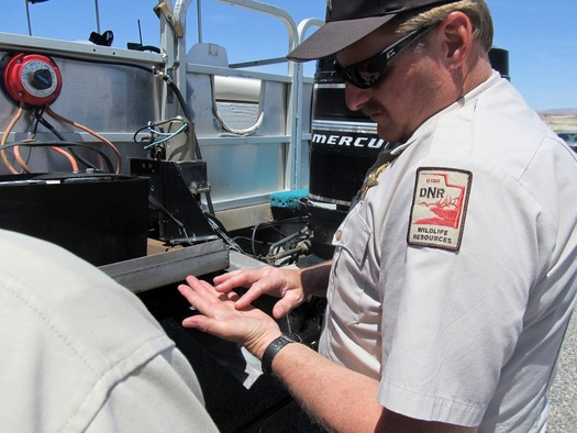 PHOTO: The tiny quagga mussel poses a serious threat to Utah's water supply and fisheries, so state officials again are inspecting boats to try and stop the organisms from hitching a ride to other waterways. Photo courtesy of the Utah Division of Wildlife Resources.