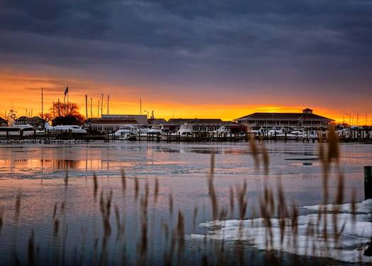 PHOTO: A federal court has cleared the way for what conservationists say needs to happen to clean up Chesapeake Bay - including reducing polluted farm runoff. Photo courtesy Chesapeake Bay Foundation.