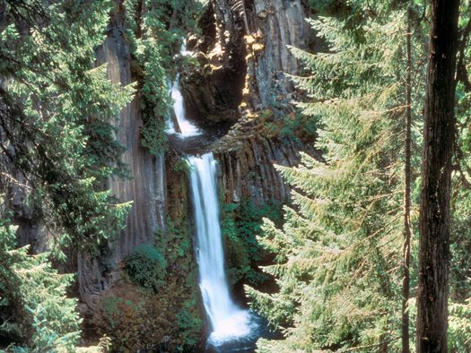 Projects to improve water quality and fish habitat in Oregon's Umpqua, Siuslaw and Rogue-Siskiyou National Forests were just a few in line for Land and Water Conservation Fund grants for 2015. Credit: U.S. Forest Service.