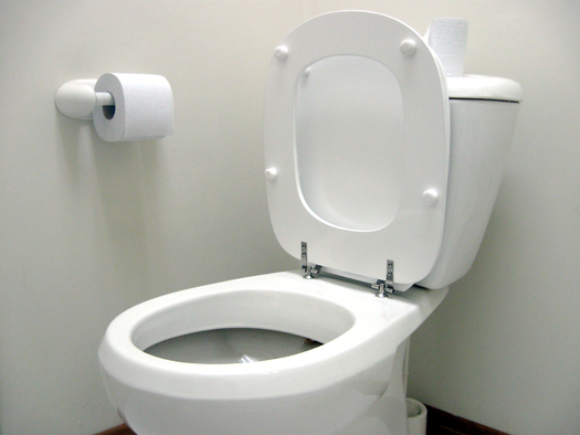 PHOTO: Disgust and contamination concerns keep people flushing the toilet after each use, according to a new survey from Indiana University-Bloomington. But the researchers say flushing the toilet less often could significantly reduce household water usage. Photo credit: alvimann/Morguefile.