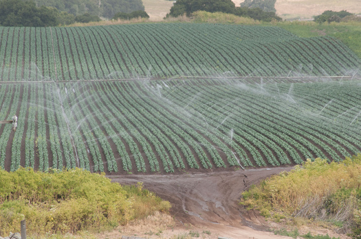 Farming is taking too much aquifer water, according to new research. Photo courtesy of USDA.gov