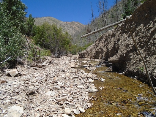 Image result for wildfire by creek