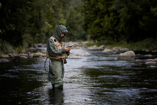 A National Wildlife Federation poll shows hunters and anglers are willing to put aside their political differences in support of greater EPA protections for clean water, including small headwaters and wetlands. Photo credit: Shaun Quinlan/Morguefile.