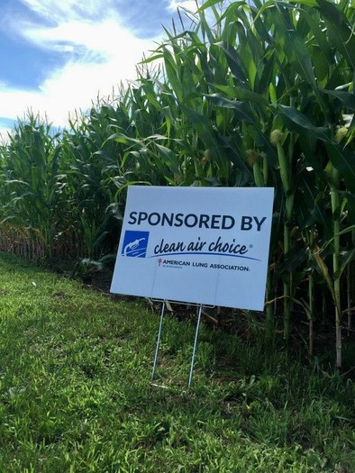 Reminiscent of the old Burma Shave rhyming signs, new roadside signs touting the clean-air benefits of E85 are popping up all over rural Wisconsin. Credit: Clean Air Choice Team.