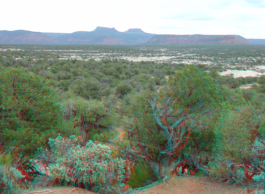 Long view of Bears Ears, Utah, cited for housing centuries of history for the Navajo and other tribes. Courtesy: U.S. Geological Survey