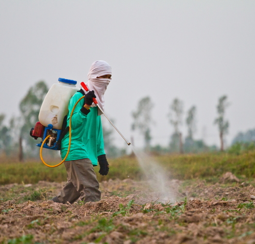 A new poll says Latinos care deeply about the environment. As a group, studies show they are highly vulnerable to pesticide, air and industrial pollution, largely because of their jobs. Credit: wasan gredpree/iStock