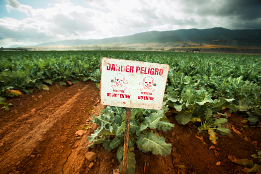 The effects of agricultural pesticides on farm workers are among the reasons a new poll shows Latinos care deeply about environmental issues. Credit: pgiam/iStockphoto.com.