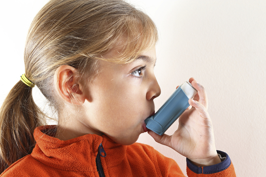 Iowa schools are not making the grade when it comes to providing a healthy and safe learning environment for those children with asthma or allergies. Photo credit: PixHouse.