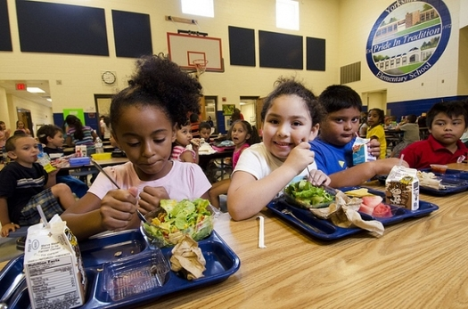 The Hunger Free Summer for Kids Act, introduced in the U.S. Senate, would help expand the Summer Food Service Program so more low-income children can get the food they need. Credit: USDA/Flickr