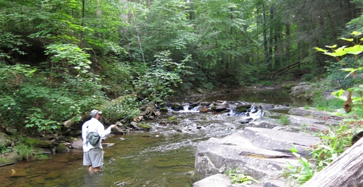 West Virginians will get to voice their opinions tonight in Charleston on a federal rule designed to protect streams. Credit: Trout Unlimited