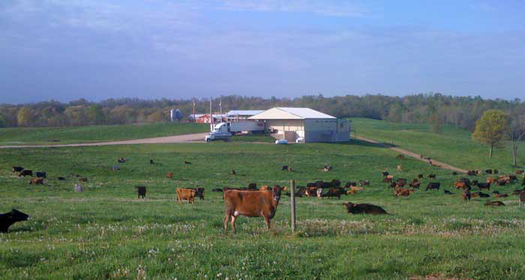 Opponents say the DARK Act could undermine businesses such as Snowville Creamery in Ohio that sell non-GMO products. Courtesy of Snowville Creamery