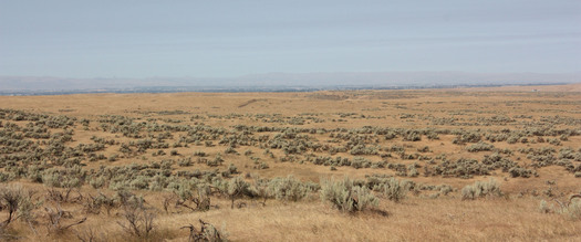 Sagebrush public lands in Wyoming are part of the largest conservation project ever undertaken by the BLM. Credit: Deborah C. Smith