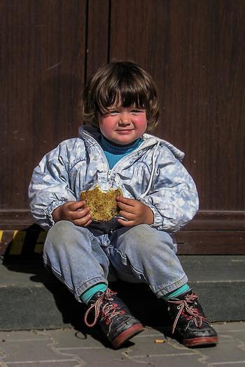 Child eating a sandwich at school. Credit: fidlerjan/morguefile