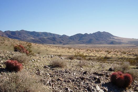 Mojave Trails area in the southern California desert. Credit: Bryn Jones