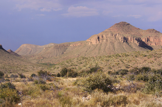 After Keystone XL's defeat, Texas residents are stepping up efforts to block an even bigger natural gas pipeline through the Chihuahuan Desert. Credit: Ricraider/Wikimedia Commons.