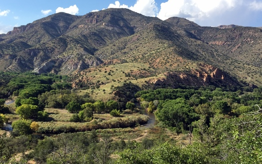 Environmental groups are fighting plans to divert water from the Gila River basin. Credit: Allyson Siwik, Gila Conservation Coalition