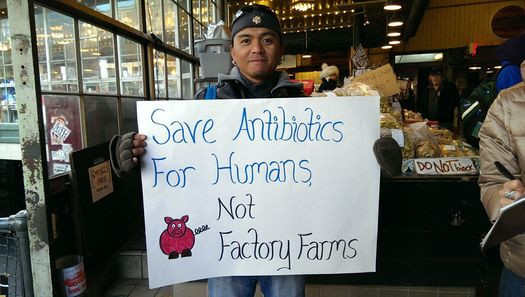 Public-health advocates have a message for Sen. Michael Bennet, D-Colo.: It's time to stop pumping antibiotics into factory-farmed animals. Credit: Food and Water Watch