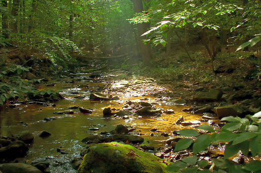 The Clean Water Rule would protect small streams and headwaters. Credit: Brubakerslegacy/Wikimedia Commons