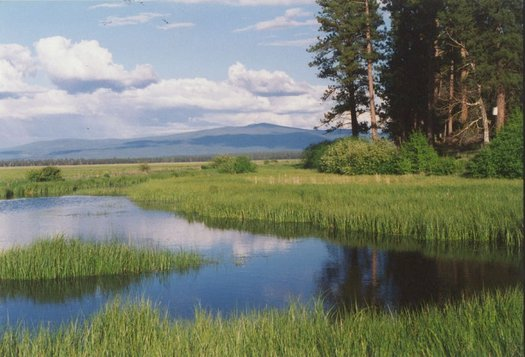 Klamath Basin water users are concerned that the region's overarching water-rights agreement will die in Congress this month. (waterwatch.org)