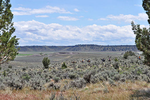 Most of the natural gas leases in Oregon are in Malheur County, part of the Vale BLM District. (Tara Martinak/BLM/Wikimedia Commons)