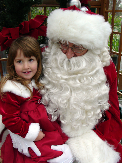 The U.S. Postal Service receives and helps answer millions of letters to Santa each year. (kakisky/morguefile.com)
