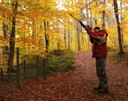 Some animal rights advocates in New York oppose the use of powerful air rifles for hunting big game. (Erdogan Ergun/freeimages)