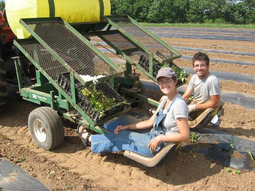 Farmers Bree Pearsall and Ben Abell say the state-based health exchange has helped them get their small family business in Oldham County off the ground. (Rootbound Farm)