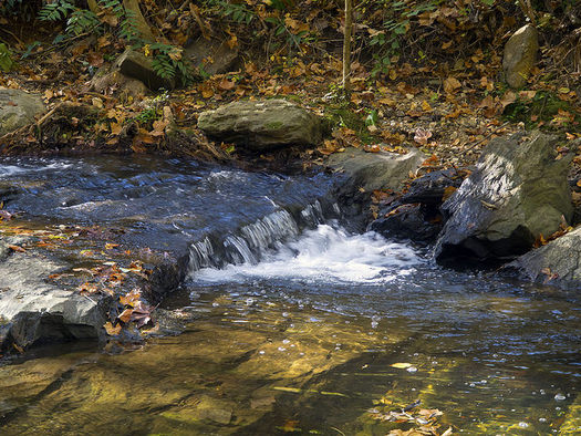 Land conservation groups in western North Carolina are protecting water resources by securing land from potential development. (David Ellis/flickr.com)