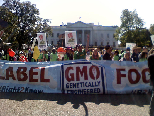 An estimated 90 percent of Americans want labeling of GMO foods. (Alexis Baden-Mayer/flickr.com)