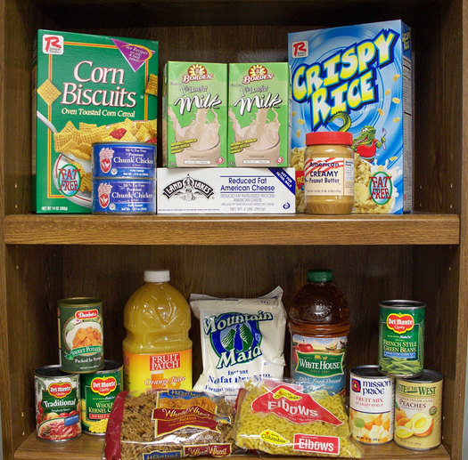 12,000 Arkansas able bodies adults will be cut off from the federal food stamp program on April 1st, and food pantries say they aren't ready. (dhhs.ne.gov)